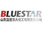 蓝星东大CIO:IT的价值在于以企业利润为导向