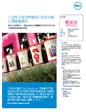 中国电子商务零售商开创在线折扣销售新模式