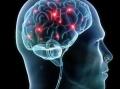 神经科学改变商业