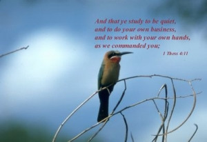 商业的四大自由