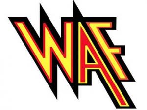 天融信:浅谈云WAF带来的利与弊