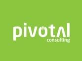 Pivotal推出最新大数据套件