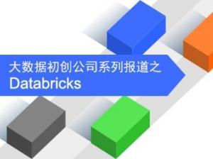"Databricks:打造数据国度的""金砖四国""专题"
