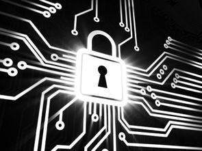 保护企业免受网络攻击的7个步骤