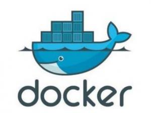"""Gartner表示Docker安全性""""尚不成熟"""",但却谈不上可怕"""