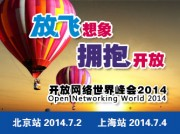 开放网络世界峰会2014