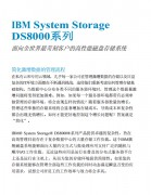 DS8000――IBM System Storage