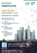 SAP HANA 2:面向数字化转型的下一代平台