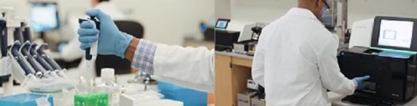IBM的Watson Health和Illumina就癌症研究中的基因组测序展开合作