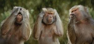 扒一扒出生在猴年的IT企业家!他们果然都是......