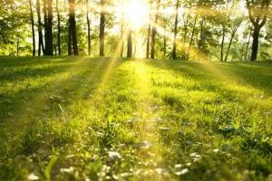 AWS启动弗吉尼亚太阳能计划