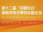 """2015""""中国光谷""""互联网+物联网产业发展国际高峰论坛"""