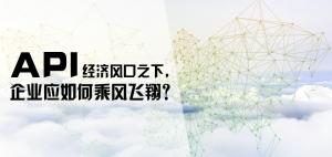 API经济风口之下,企业应如何乘风飞翔?
