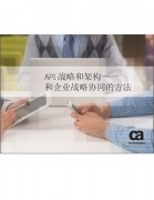 API战略和架构――和企业战略协同的方法