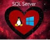 微软针对Linux和Windows的SQL Server 2017将发首个预览版本