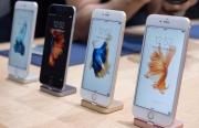 郭明池:iPhone 6s Plus正面临供货不足