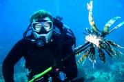梭子鱼公司发布人工智能驱动的网络钓鱼防护平台