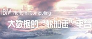 "大数据的""软加速""平台――IBM Platform Computing"