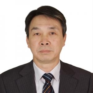 李红 中国中钢集团公司信息管理中心总经理