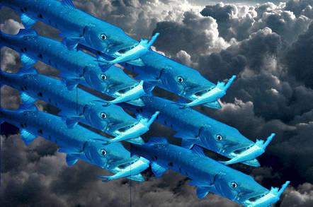 私募股权Thoma Bravo以16亿美元收购梭子鱼