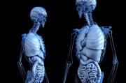 日本研究报告指出:AI不到一秒即可诊断肠癌