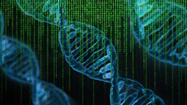 终极存储解决方案:把ZB级海量数据写在DNA上