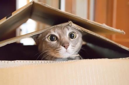 微软希望将你的数据放在一个盒子里并将其放入Azure