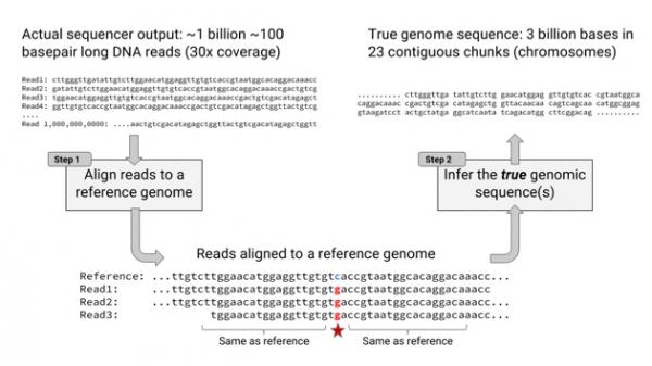用图像识别做基因预测 谷歌拿到了FDA挑战赛最高分