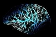 MIT开发出神经网络芯片,功耗降低95%,适用于手机和物联网