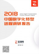 中国数字化转型进程调研报告