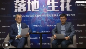视频访谈:VMware王冰峰谈如何与合作伙伴共成长!