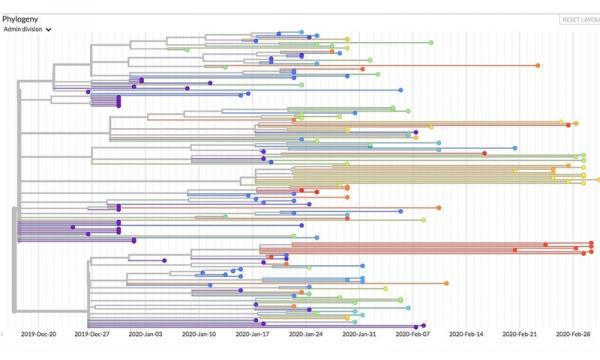 App工程与基因测序——为追踪新冠病毒传播路径添助力