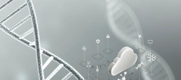 打造云端基因测序 华为云持续赋能生物信息产业