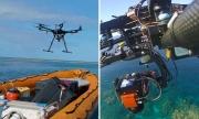 """""""AI+無人機""""雙拳出擊,拯救面臨解體危機的大堡礁"""