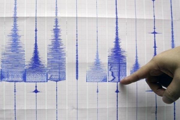 新的人工智能系统可以预测地震