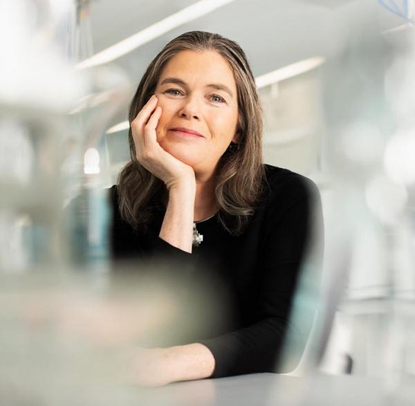 明星教授Koller计划用AI技术研发新药