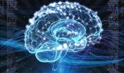 这一年,人工智能对未来的预测越来越准了