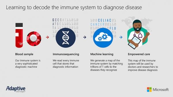 AI和健康:利用机器学习了解人体免疫系统
