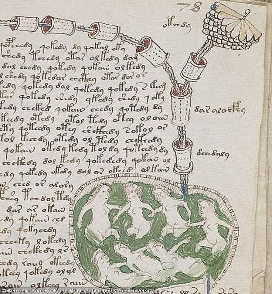 """这本""""世界最神秘之书""""《伏尼契手稿》将被AI破译?"""
