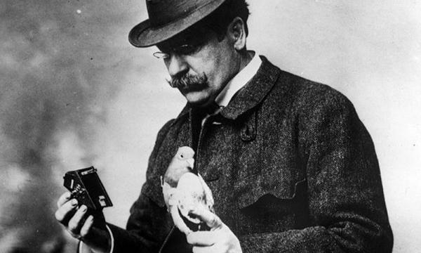 神奇的鸽子网络:最早的点对点通信技术