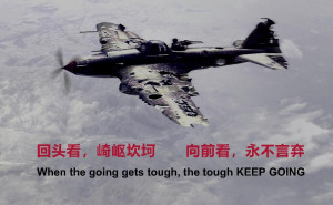 �A�榘l�:��烈反�γ��商�詹�H��θA�榈闹苯赢a品修改��t