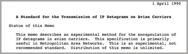 """以鸽子为载体的""""鸽联网""""仍是数据传输的最快方式"""