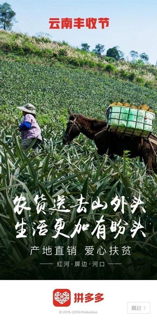 """拼多多与云南省政府签署协议 5年内将落地100个""""多多农园"""""""