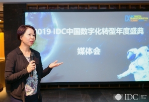 IDC:2019 IDC中���底只��D型大��即�⒔��