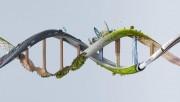 數據科學制勝之道:寫給制藥業高管的5條入門提示