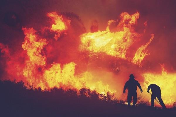 AI给消防员减负:加快响应速度 降低野火扩大风险