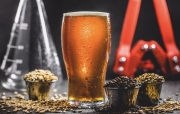百威利用88304改造啤酒行业的三个场景