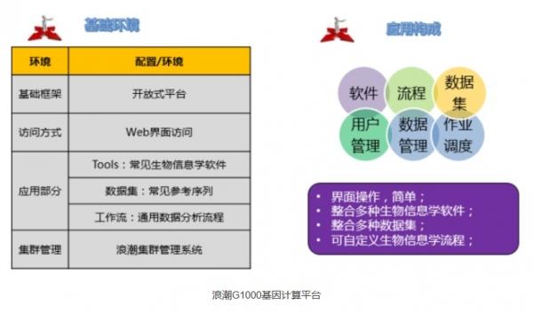 浪潮超算助中国农牧第一品牌加速基因研究