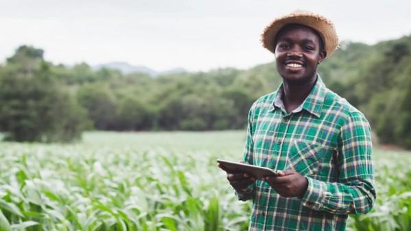 AI新应用:改善粮食安全,提高农民生活质量